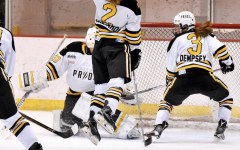Equality is the Goal in Women's Professional Hockey