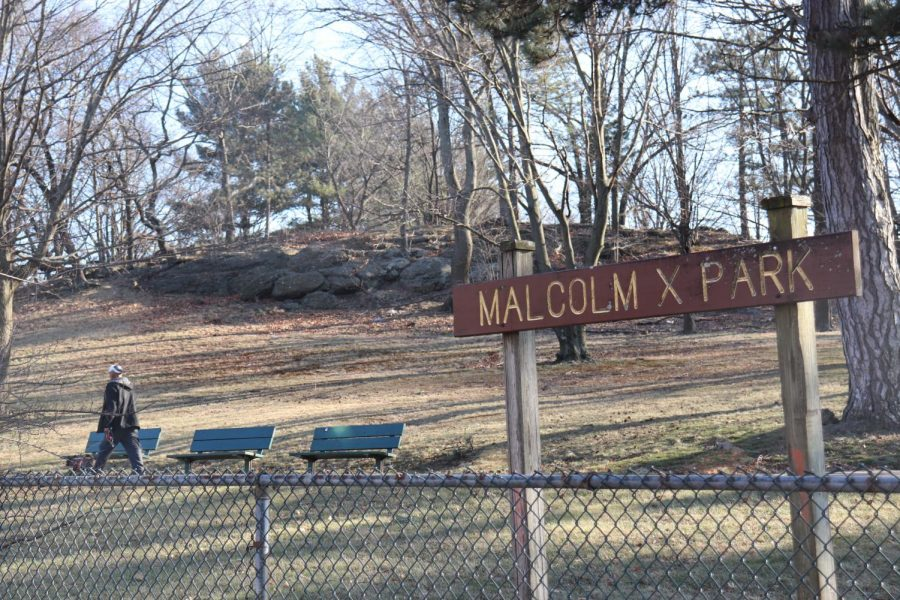 Malcolm X Park by Eileen O'Grady