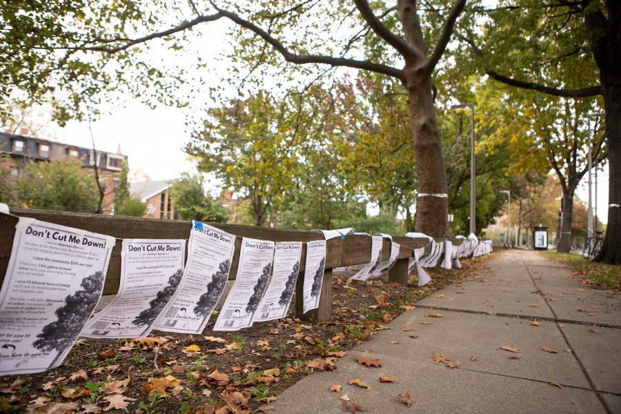 Posters with messages objecting the removal of trees on Melnea Cass.