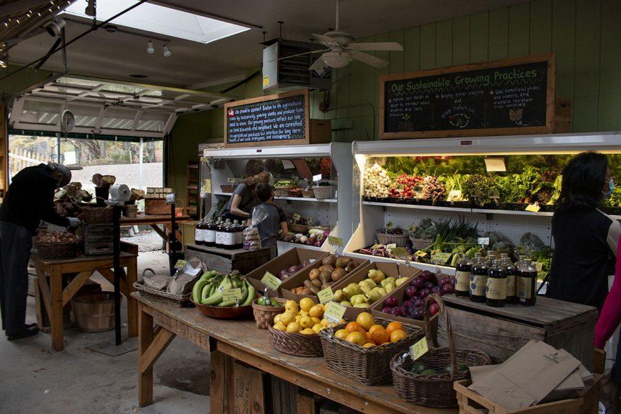 Allandale Farm in Brookline